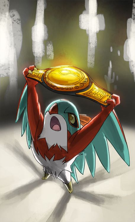Pokeddexy #8/9: Favourite Flying/Ghost Types  Hawlucha and Gengar.