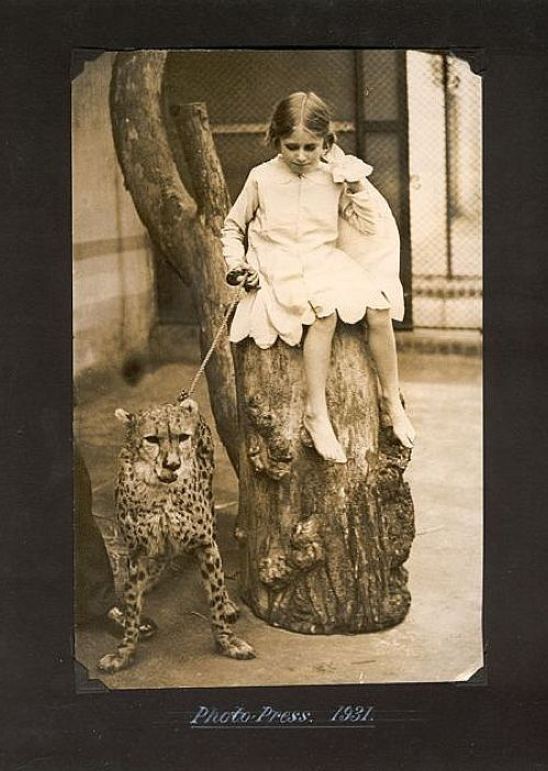 What It Was Like  being a Sign Writers daughter At The London Zoo In The 1930s