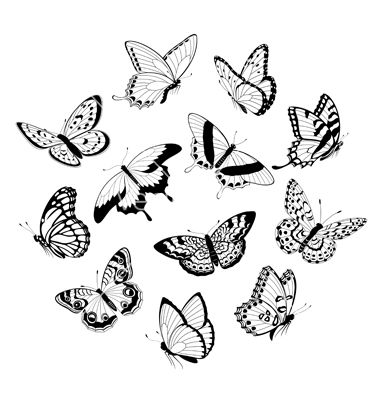 Flying black white butterflies vector 896191 - by fireflamenco on VectorStock®