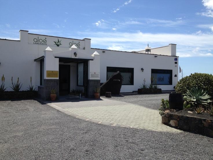 Museo del Aloe. Aloe Plus Lanzarote (Punta Mujeres)