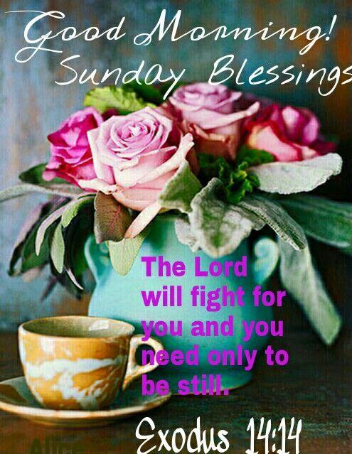 Good morning! Sunday Blessings,