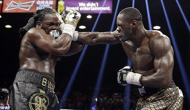 Deontay Wilder defeats Bermane Stiverne to become the new WBC heavyweight champion.