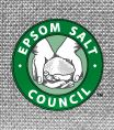 Epsom Salt as Fertilizer: For lawns, use 3 pounds of Epsom salt for every 1,250 square feet. Apply with a spreader or dilute the Epsom salt in water and use a sprayer. Trees absorb Epsom Salt best over the root zone. Use 2 tablespoons per 9 square feet by diluting in water. Apply 3 times each year. For shrubs (evergreens, azaleas, rhododendron), apply 1 tablespoon per 9 square feet over the root zone by diluting in water. Apply every 2 to 4 weeks.: Salts Council, Salts Bath, Epsom Salts, Health Benefits, Magnesium Sulfate, Doctors, Council News, Improvement Sleep, Help Treats