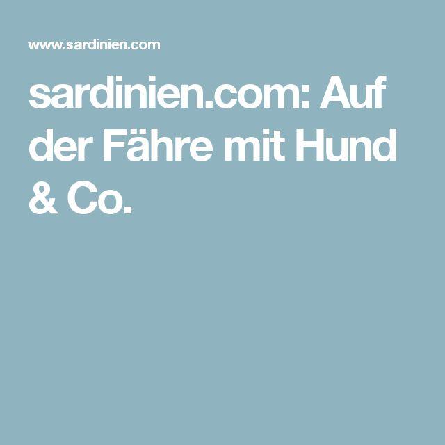 sardinien.com: Auf der Fähre mit Hund & Co.