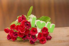 Falta de definición roja del fondo de Valentine Roses Vintage Foto de archivo libre de regalías