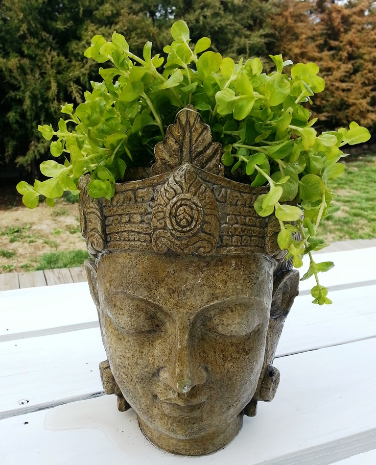Pot Head Planters: Buddha Head Planter Made From Resin.