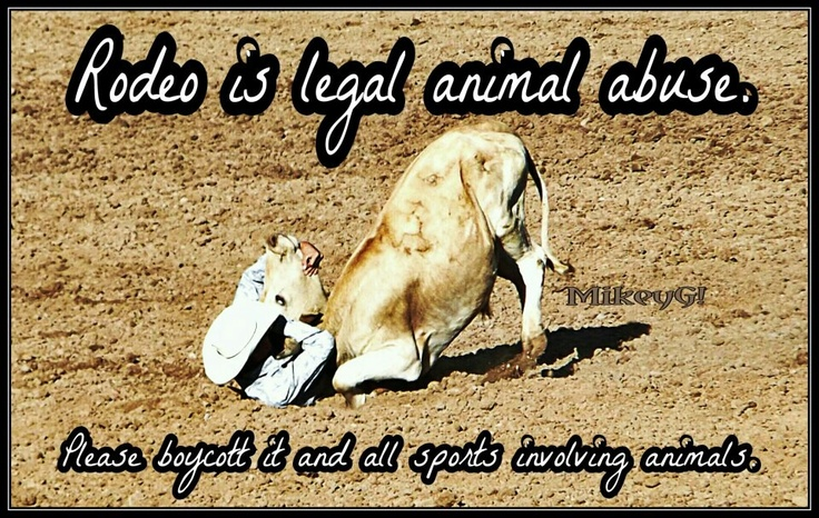 the misunderstanding of the sport of rodeo as an animal abuse The methven rodeo is now one of the largest rodeo growing up and having the same love of both the sport and the animals as i this animal abuse stop rodeo.