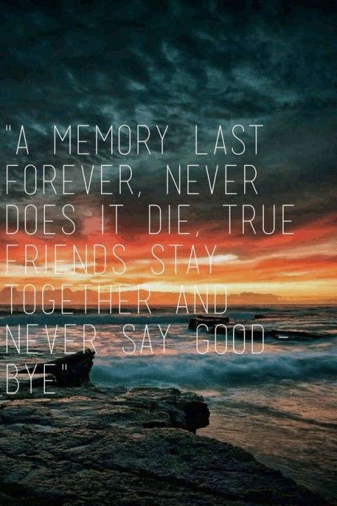 best 20 farewell quotes ideas on pinterest reminiscing