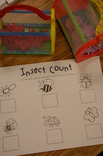 insects count and other bugs activity