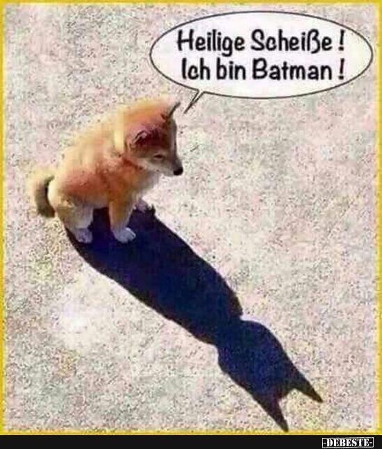 Heilige Scheiße! Ich bin Batman! | Lustige Bilder, Sprüche, Witze, echt lustig