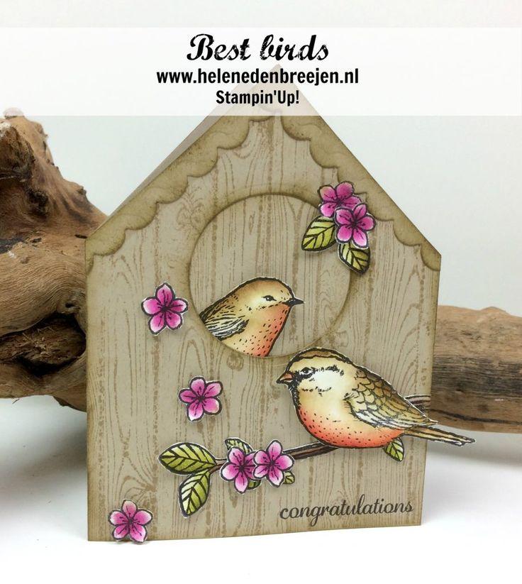 """Hoi hoi, Wat zijn ze leuk he, de vogeltjes :-) Het idee voor dit vogelhuisje kwam ik tegen op Pinterest, als extra heb ik het """"dak"""" een schulprandje gegeven met een stans uit de Cutie pie thinlits. De vogeltjes, bloemen, blaadjes en tak werden ingekleurd met de Blender pen.  Gebruikte"""