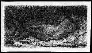 Notizie dal Piemonte. Freud rembrandt opere di due maestri
