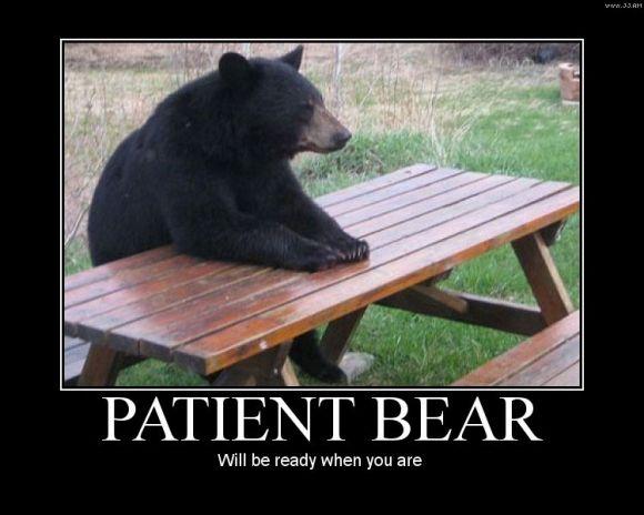 Patient Bear : Patience is the key to almost door.