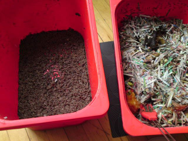 """Ikea hackers making a worm farm composting bin.  My husband made something like this once but it was larger, grosser, and sat in the bathtub at his apartment.  It usually makes me the winner in the """"my husband is weirder than yours"""" competition."""