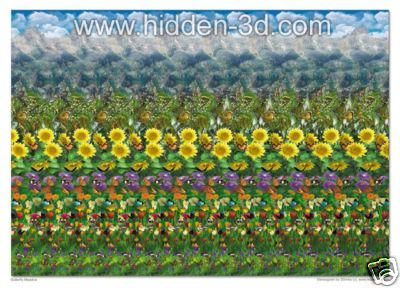 "time wars 3d hidden pictures | Butterfly Meadow 18""x13"" 3D Stereogram 3D - Ad#: 321962 - Addoway"
