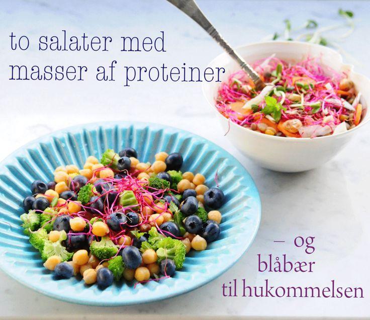 bønnesalater to