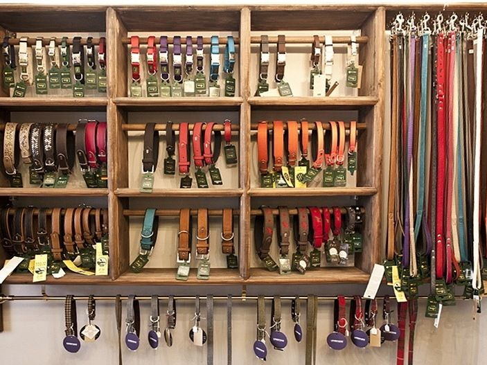 Nice leash and collar display at Richmonds Rascals in London, UK - http://amzn.to/2h50xSk