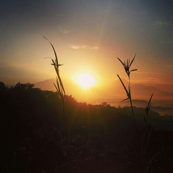 #tumphuksetumbuh #magelang #yogyakarta #wisataalam #gerilyajogja #ExploreJogja #jelajahjogja #backpackerjogja #backpacker #traveling #trip #adventure #vacation #tamasyajogja #tamasya #backpackerbangil #lensakeindahan