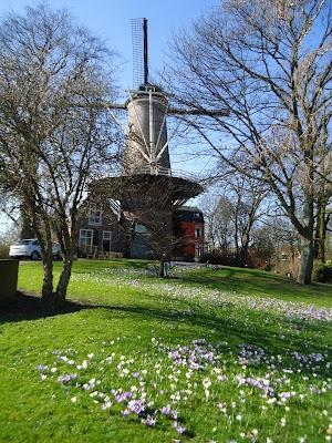 Spring in Gouda visit the Rode Leeuw