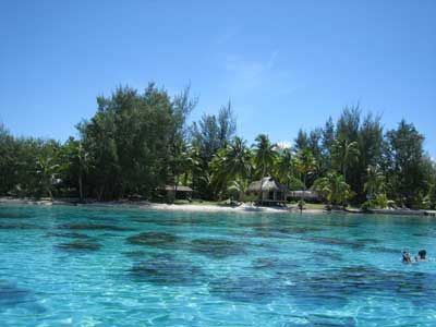 http://honeymoons.about.com/od/tahiti/ig/Tahiti-Pictures/Bora-Bora-Coral-Garden.htm