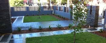 Front garden landscaping-magnolia grandiflora feature tree...paving