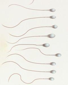русская девушки вытекает сперма эту