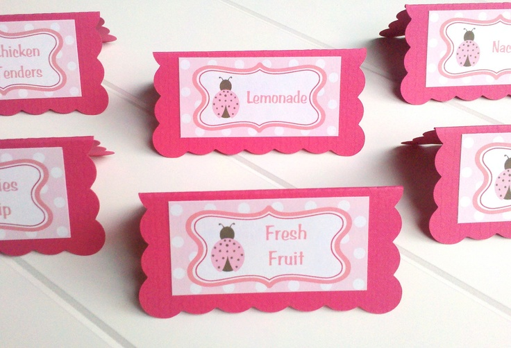 Ladybug Party Signs -  Food Tents - Menu Cards - Place Cards - Food Signs - Ladybug Party & Shower Decorations in Hot and Light Pink (6). $12.00, via Etsy.