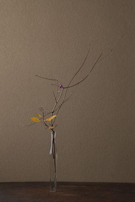 花=紫式部(ムラサキシキブ、小紫陽花(コアジサイ)Flowers: Murasaki Shikibu, little hydrangea – 川瀬敏郎 Kawase Toshiro