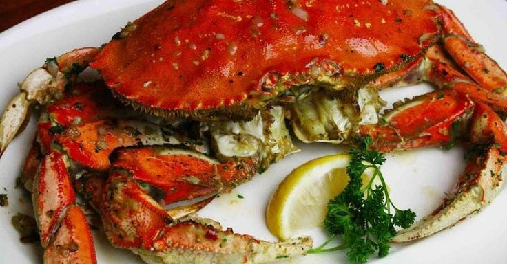 Joe's Crab Shack recipes, a helpful guide to preparing your favorite dishes from the Joe's Crab Shack menu at home. These copycat recipes are typically not based on exactly the method used at Joe's Crab Shack, but are modeled closely on the flavor and texture of Joe's Crab Shack's food, making it e...