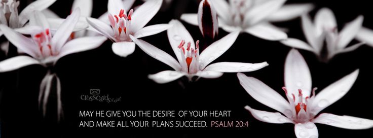 """May he grant your heart's desires and make all your plans succeed."" Psalm 20:4"