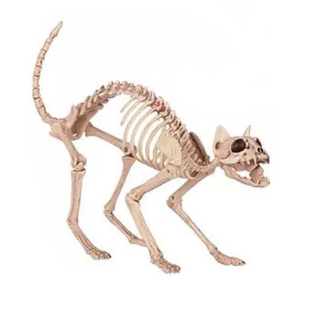 Squelette Chat 100% En Plastique Animal Squelette Os pour Effrayant Halloween Décoration