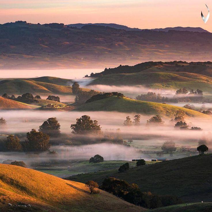 Petaluma, California ♡
