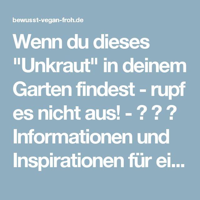"""Wenn du dieses """"Unkraut"""" in deinem Garten findest - rupf es nicht aus! - ☼ ✿ ☺ Informationen und Inspirationen für ein Bewusstes, Veganes und (F)rohes Leben ☺ ✿ ☼"""