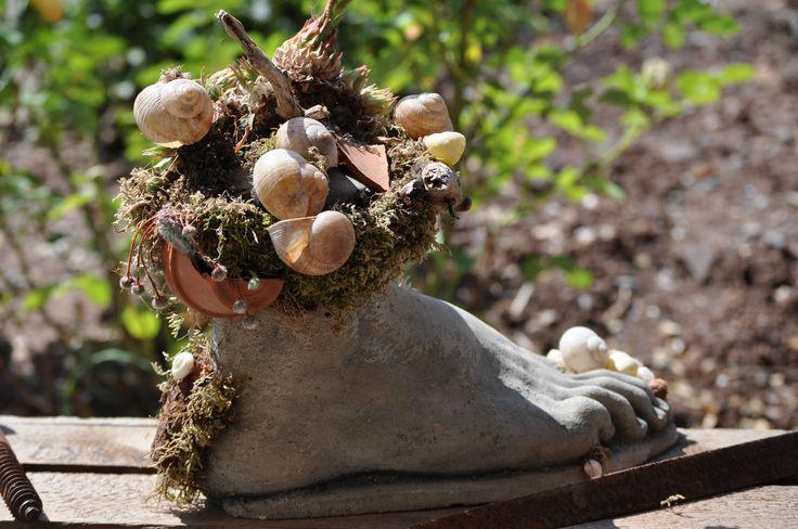 Lust im Urlaub kreativ zu sein? Alles mögliche kann man mit Hauwurz bepflanzen. Viele Ideen findet ihr im Ferienhaus Casa Valrea in Italien. www.casavalrea.de Wir sind in unser Paradis gezogen und lassen auch Feriengäste darin wohnen. Falls ihr Lust habt auf italienisches Landleben in schönen Ferienwohnungen, dann kommt uns besuchen.