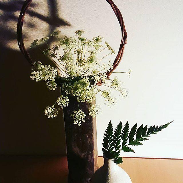 【kimonotoveya】さんのInstagramをピンしています。 《寒くてたまらないですね(*≧∀≦*) 妄想で、暖かい暖かいと考えてる方が多いのでは?わたしはその一人w  1月28日いよいよワークショップ行いますよ~! 吉祥寺cafe22 ☆14-16時1時間でも可☆ Toveya WS  武藤由貴子  着付けのみ、お花のみ等 選べます! ご希望あれば気に入ってる着物、花器 花の持ち込みも大丈夫です☆ ☆着付けと  フラワーアレンジWSのご紹介☆ 一回\2,500  #着物#kids#吉祥寺 #お稽古#着付けのお稽古#一緒 #お花見#桜#楽しい#休日#遊ぶ#学ぶ #女性限定#お着物#嬉しい#ありがとう #お正月#ランチ#ママ友 #七緒#東京#ネイル#インスタ#インスタデイリー##幸せ#幸せな時間#たのしい#嬉しい》