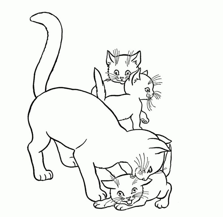 Cat coloring pages pdf free coloring sheets kittens