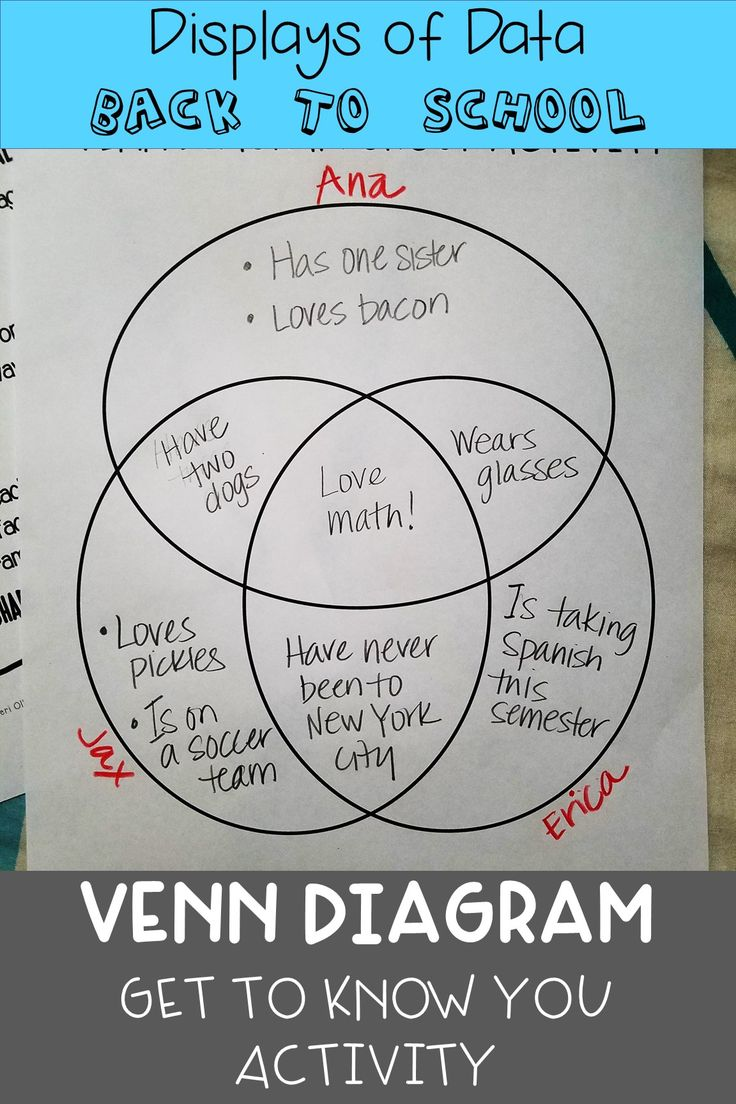 Venn Diagram Get To Know You Back To School Activity