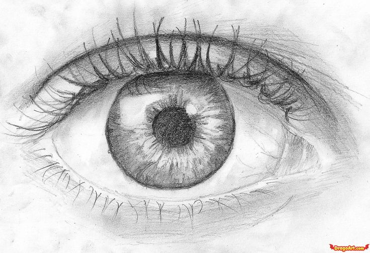 +real sketched drawings | How to Draw an Eye in Pencil, Step by Step, Eyes, People, FREE Online ...