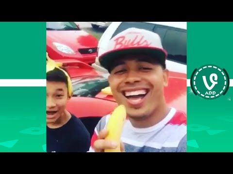 Ultimate Mighty Duck Vine Compilation (OVER 1 HOUR) - Best Vines of All time - VineADD✔ - YouTube