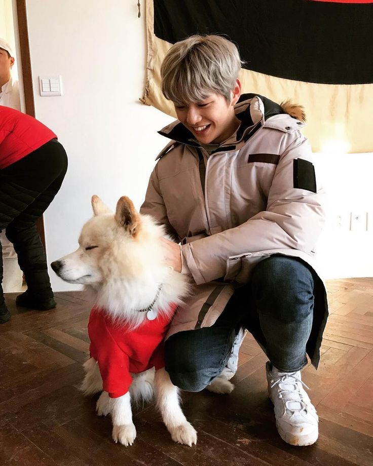 171212 #WANNAONE #Daniel on steamed_bread2000 IG <3 baby with a dog omg how cute i'm dead