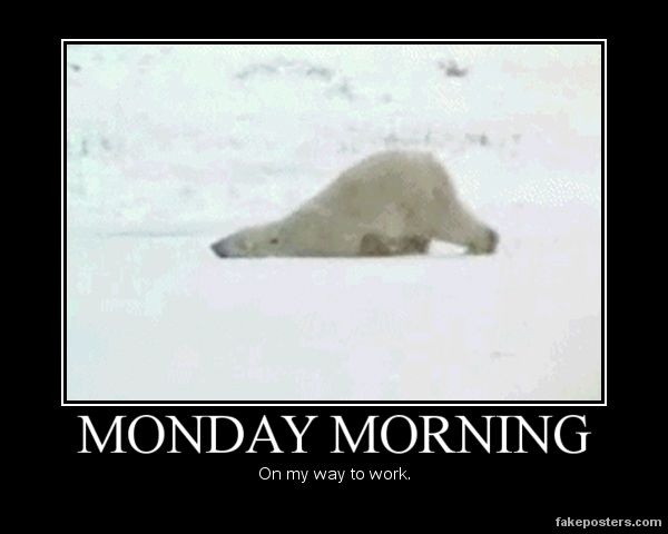 17 Pictures That Perfectly Describe How We Feel On Mondays :(