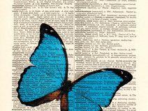 Disegno della farfalla Dizionario arte stampa