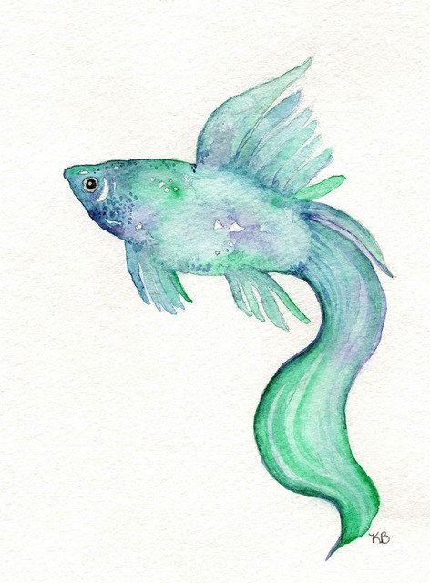 Beta Fish/Teal, Blue, Purple/ Watercolor Print. $14.00, via Etsy.