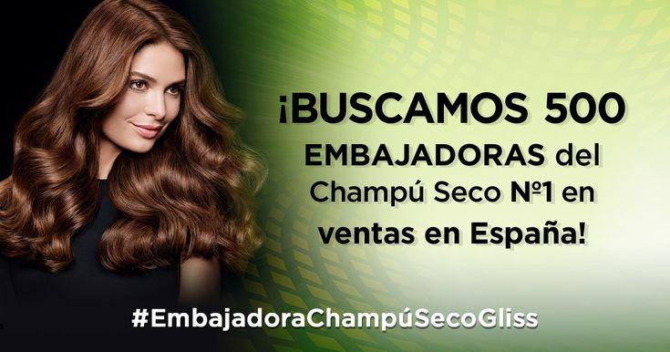 ¡BUSCAMOS 500 embajadoras del  Champú Seco Nº1 en ventas en España! ¿Quieres ser una de ellas?