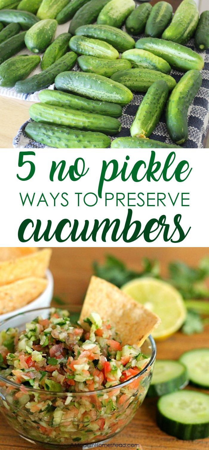 Cucumbers rapidly produce in most gardens for months every summer. Check out how to store cucumbers long term without having to turn them all into pickles! How to preserve cucumbers without pickling.