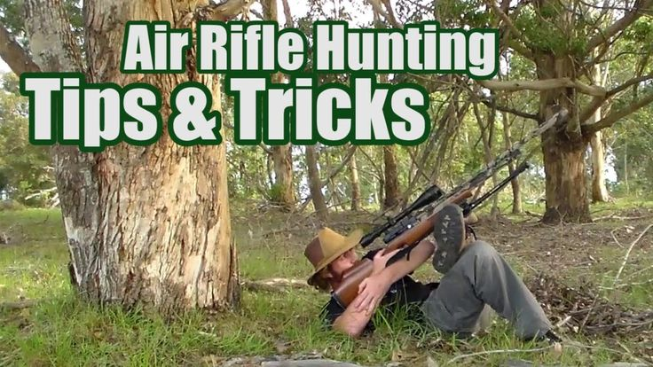 Air Rifle Hunting Tips & Tricks: Position, Stance & Balance