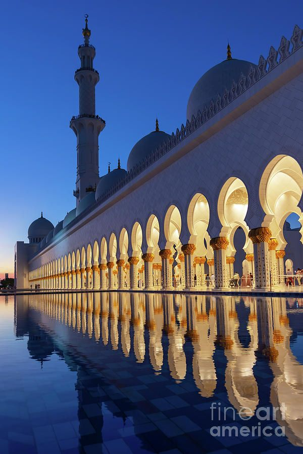 Abu Dhabi Grand Mosque At Night Vertical Photography By