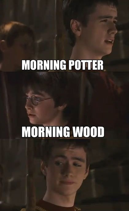 Aaahh, my daily dose of Harry Potter humor. :)