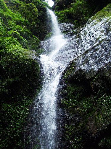 Chadwick Falls - Shimla