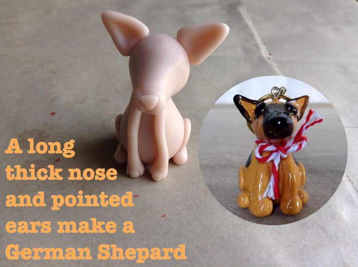 The German Shepherd has a longish thick nose and pointed ears.  http://jebarsby.weebly.com/blog/re-fur-pups